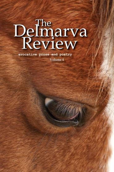 DR V4 Front Cover
