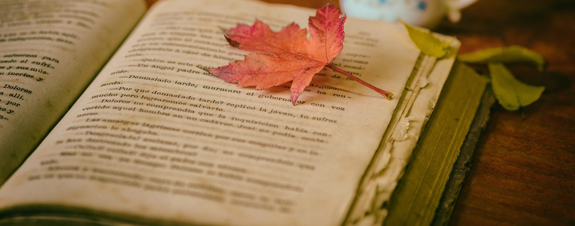 Pixabay - Free Clip Art - Use For Prose and Poetry- Book and Leaf