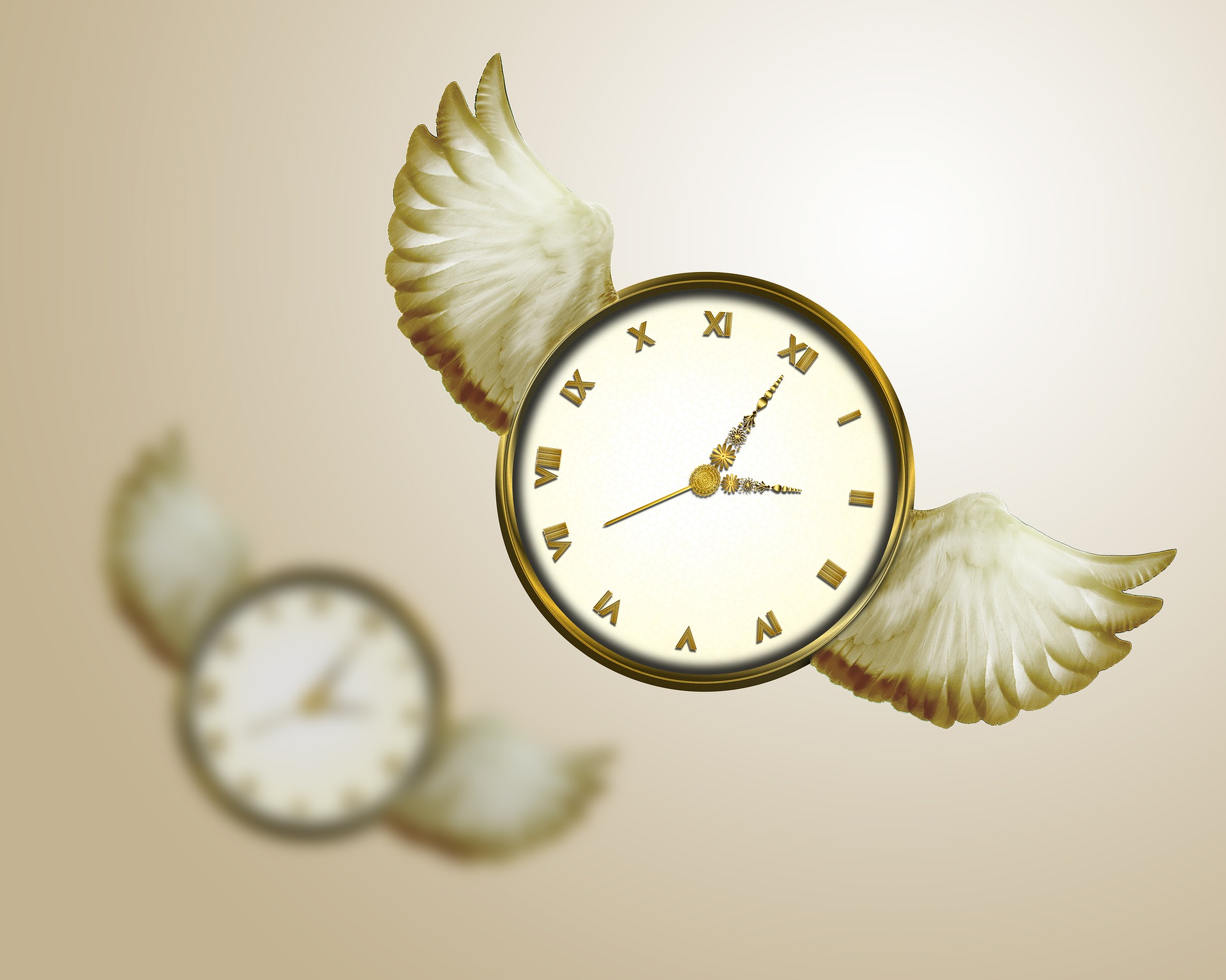 time-flies-2470848_1920